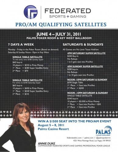 federated palms satellites