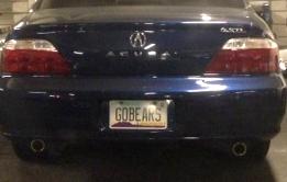GOBEARS (Arizona)
