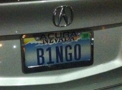 nevada license plate bingo