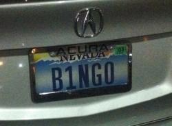 nevada license plate bingo